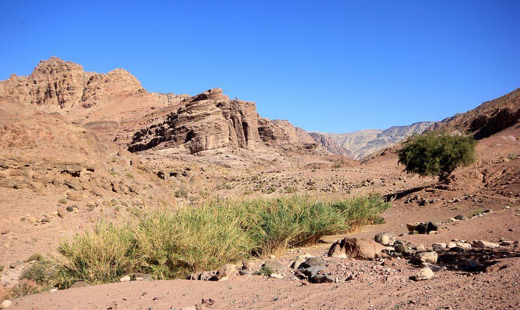 Read more about the article Rencontre avec des Bédouins dans la réserve de Dana